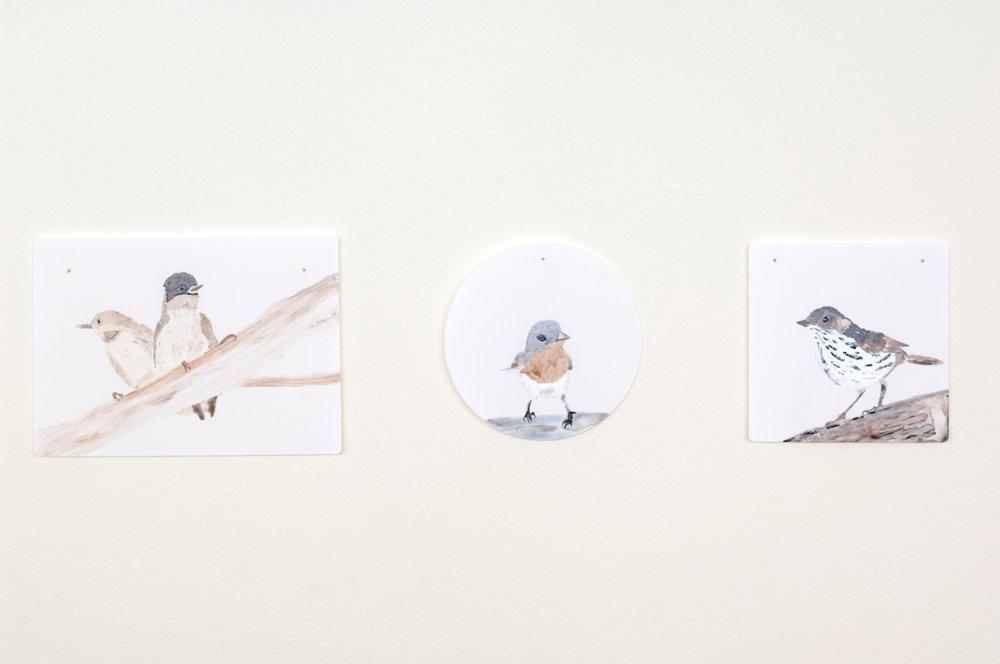 Tiles_Birds3.jpg