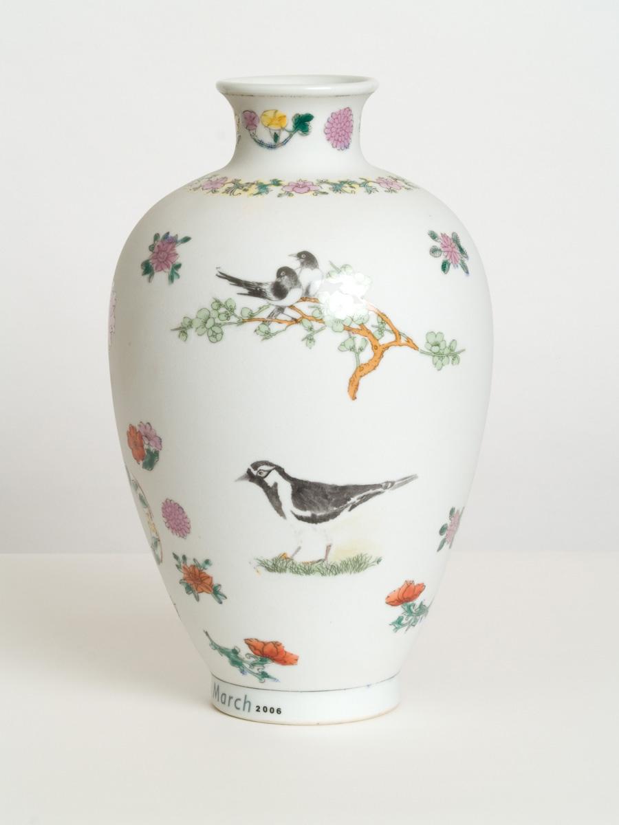 BirdDiary_MagpieLark.jpg