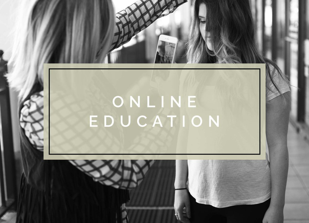 home page education graphics_online.jpg