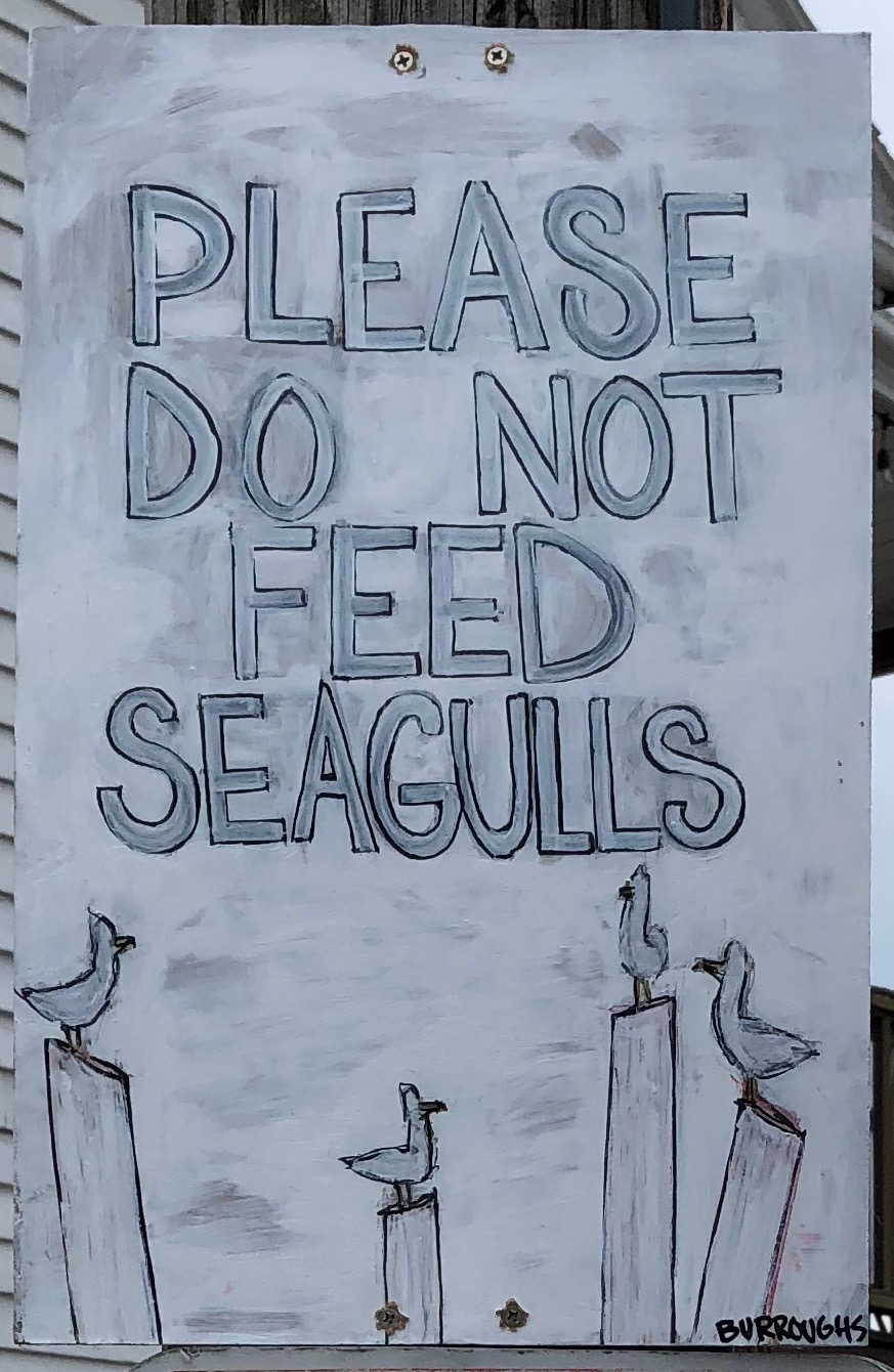 """Please Do Not Feed Seagulls"" 2018  12""x 18""  Acrylic Paint and graphite on panel"