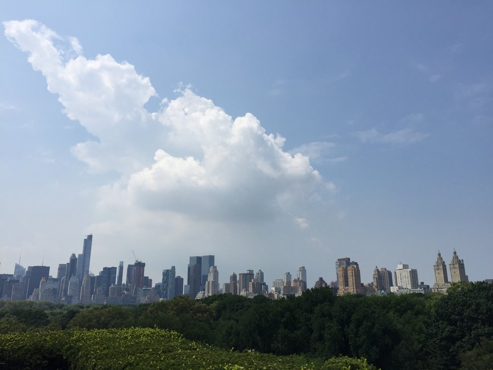 NYC from The Met rooftop