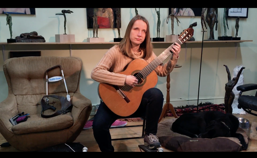 Screenshot. Click here to watch Ioana's Holman pitch video.