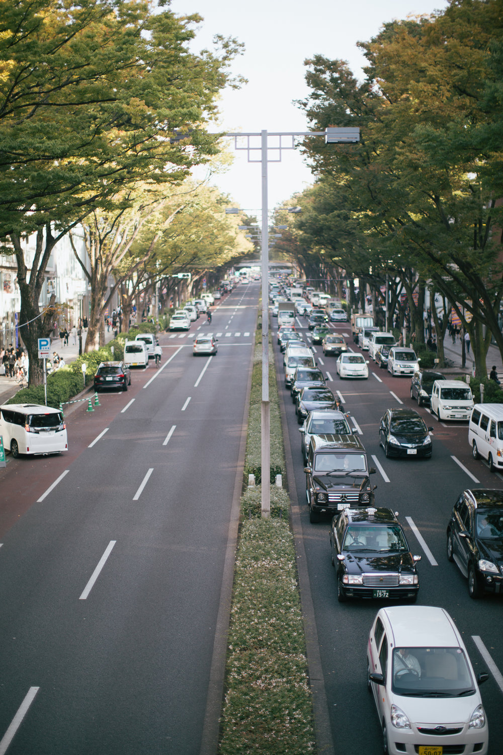[Click to enlarge] Luxury brands and trees line Omotesando in one of the most iconic views around Tokyo. Traffic jams going in one direction heading from Aoyama towards Harajuku.