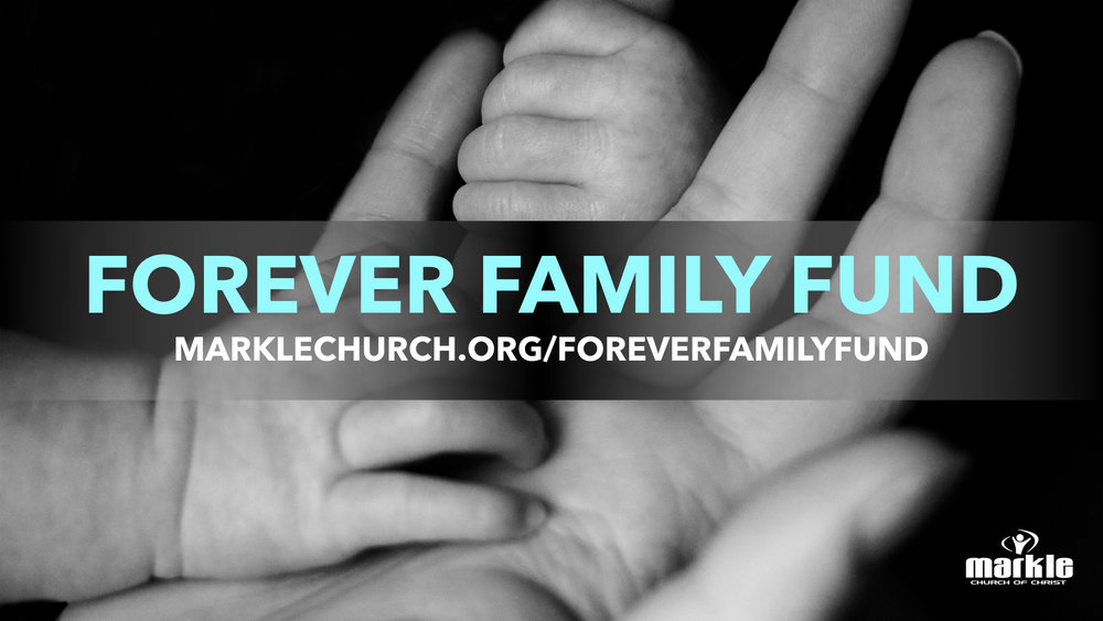 Forever Family Fund (main graphic).jpeg