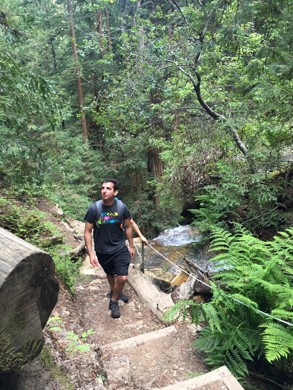 Big Basin Camping and Hiking Guide: Santa Cruz Mountains, California ...
