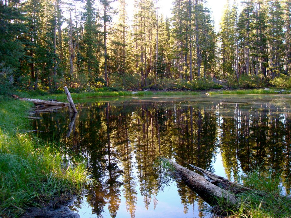 A beautiful pond we saw during out Pacific Crest Trail segment hike