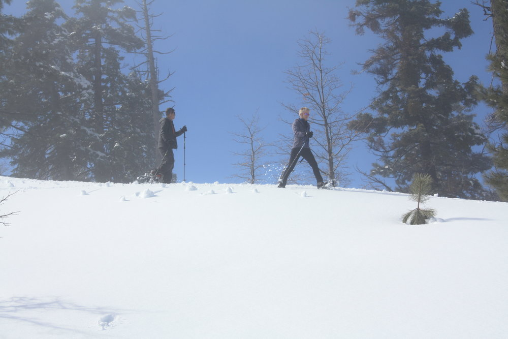 And snowshoeing