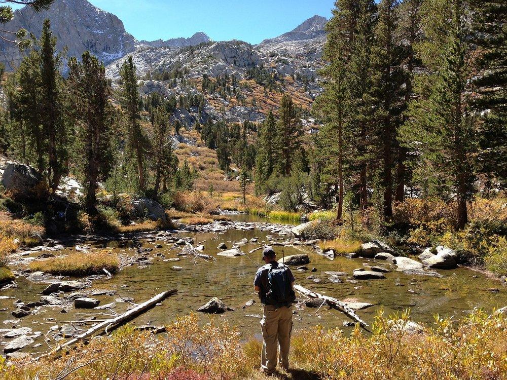 Best Wilderness Fishing Gear