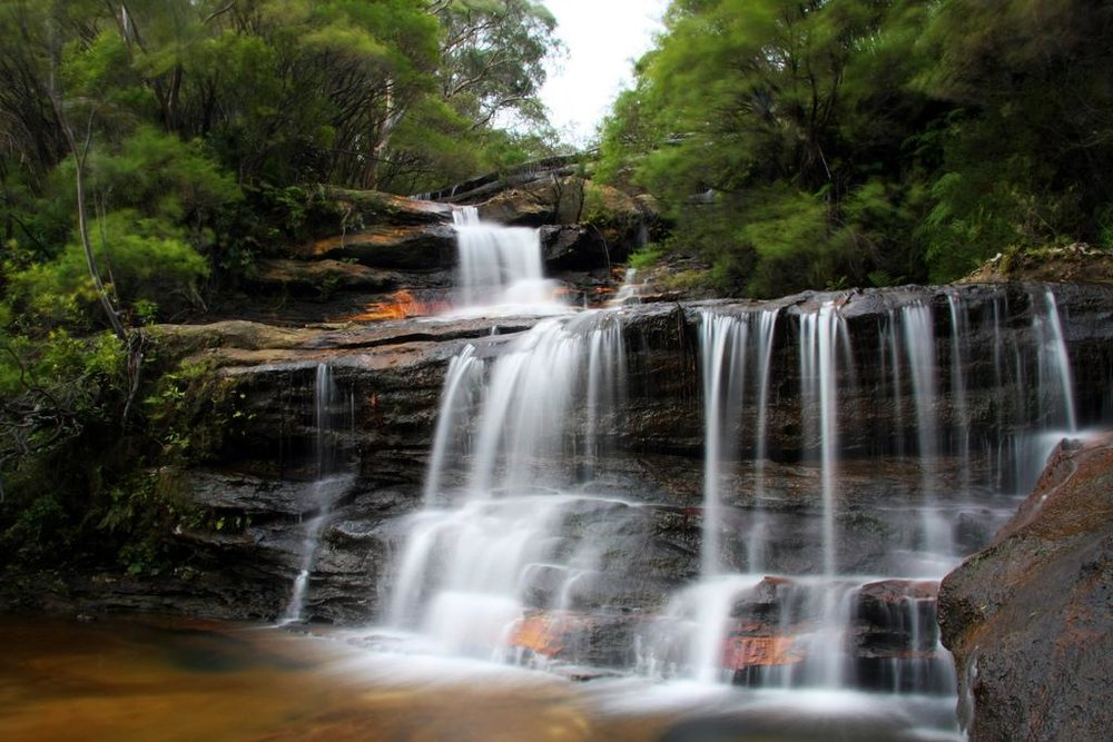 Wentworth Falls - Blue Mountain Day Tour ( flickr )