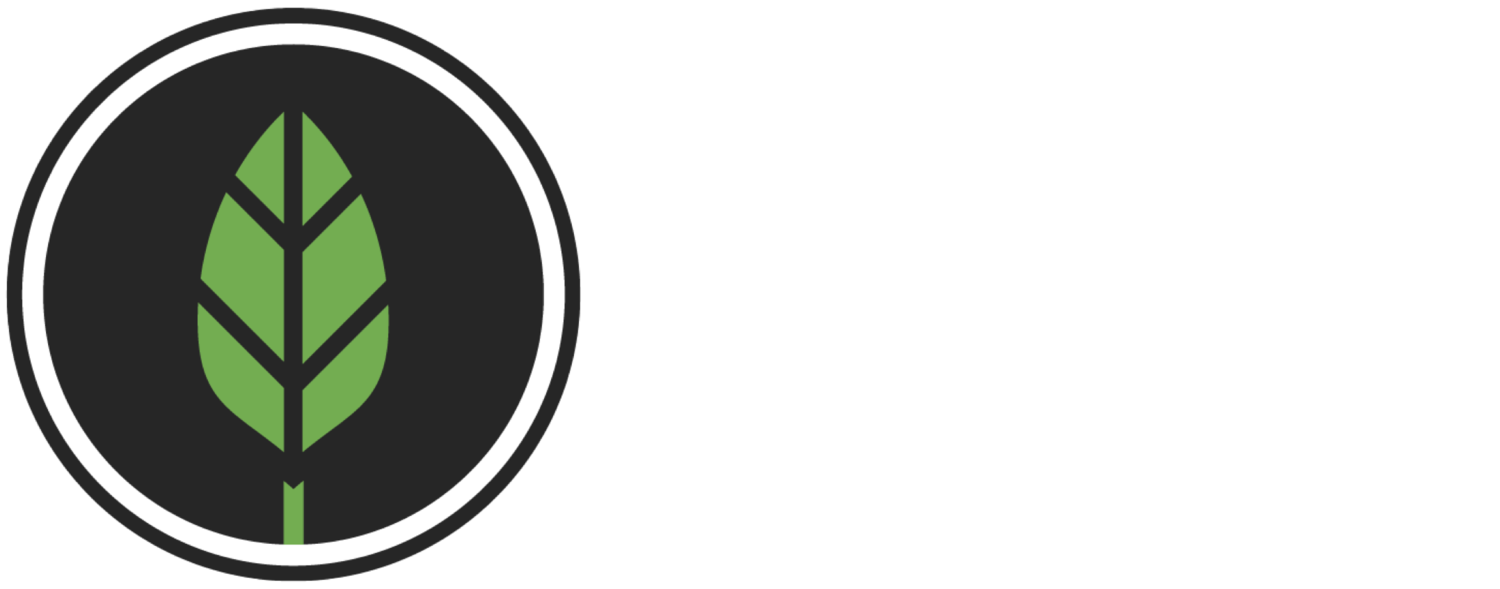 SEEDS CHURCH
