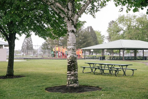 Harlamen Park - 795 S Heather St.Cornelius,  OR 97113See map: Google Maps
