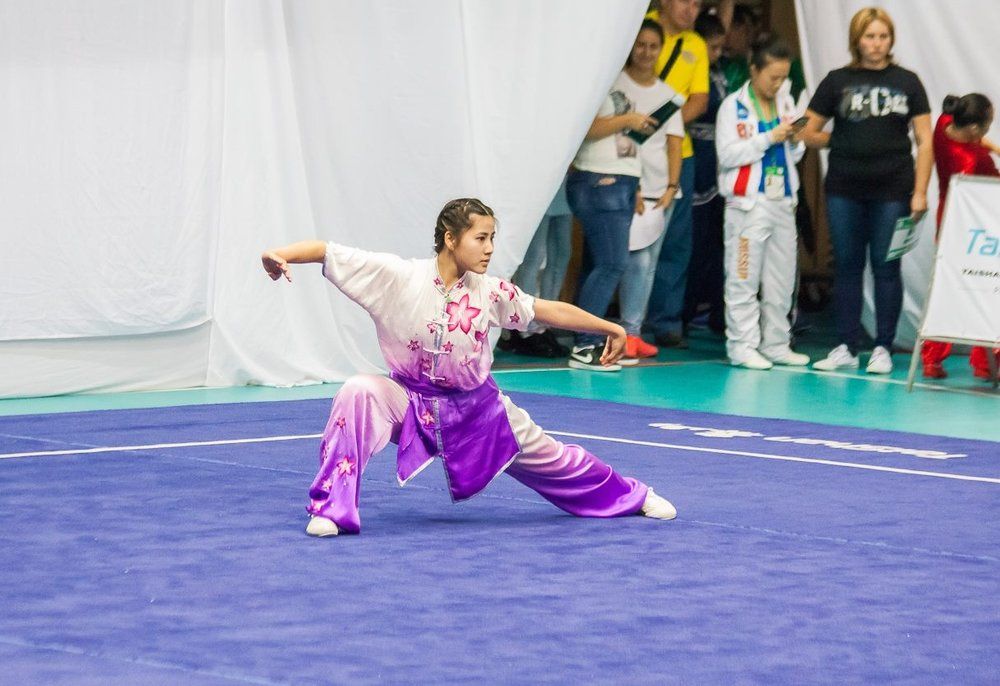 Remy, Changquan, 2016 WJWC (Bulgaria).