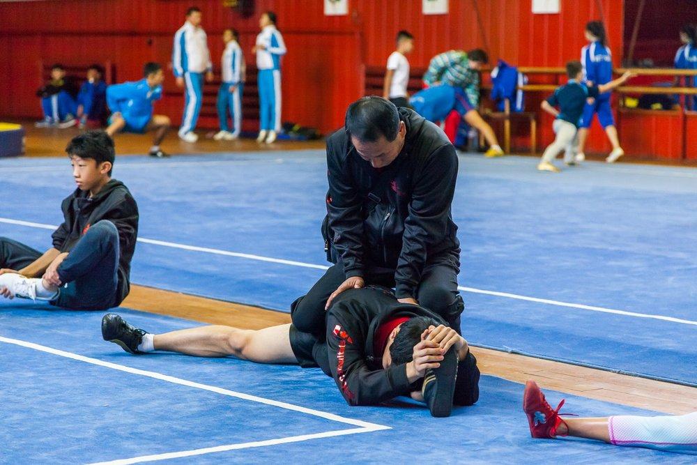 Wayland_Li_World_Wushu_Championships_Sifu_Training_2016_Bulgaria_Canada.jpg