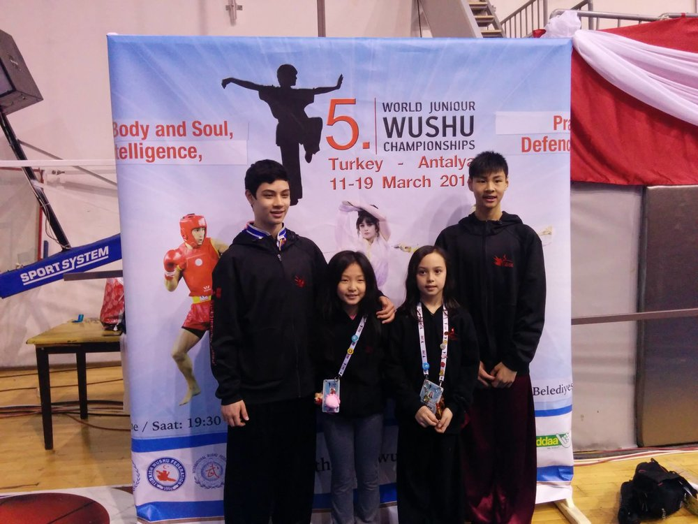 Wayland_Li_Wushu_World_Junior_Championships_2014_Turkey_3.jpg