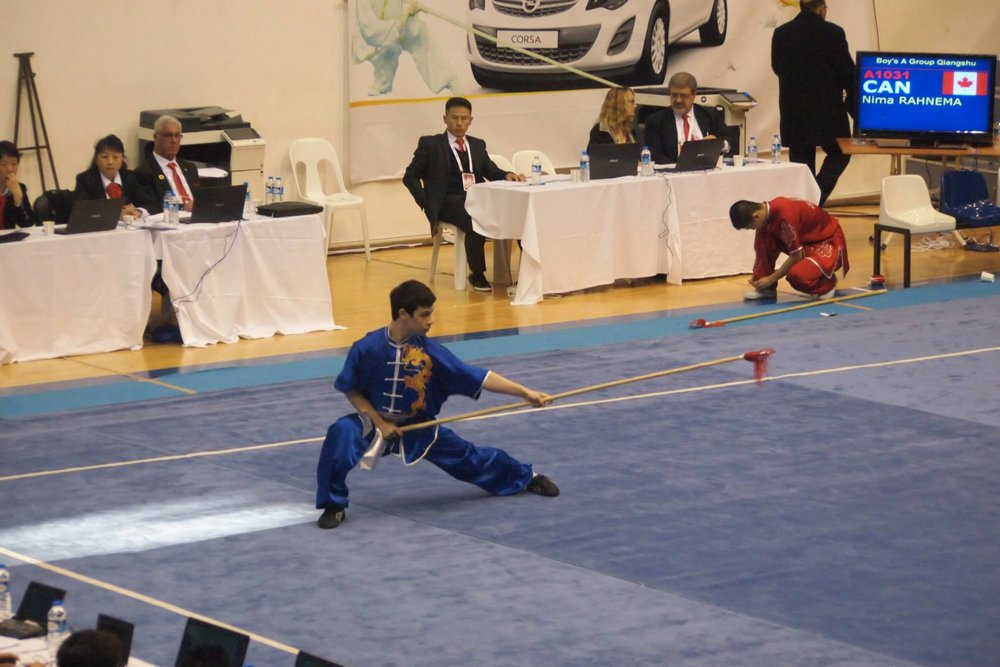 Wayland_Li_Wushu_World_Junior_Championships_2014_Turkey_Nima_2.jpg