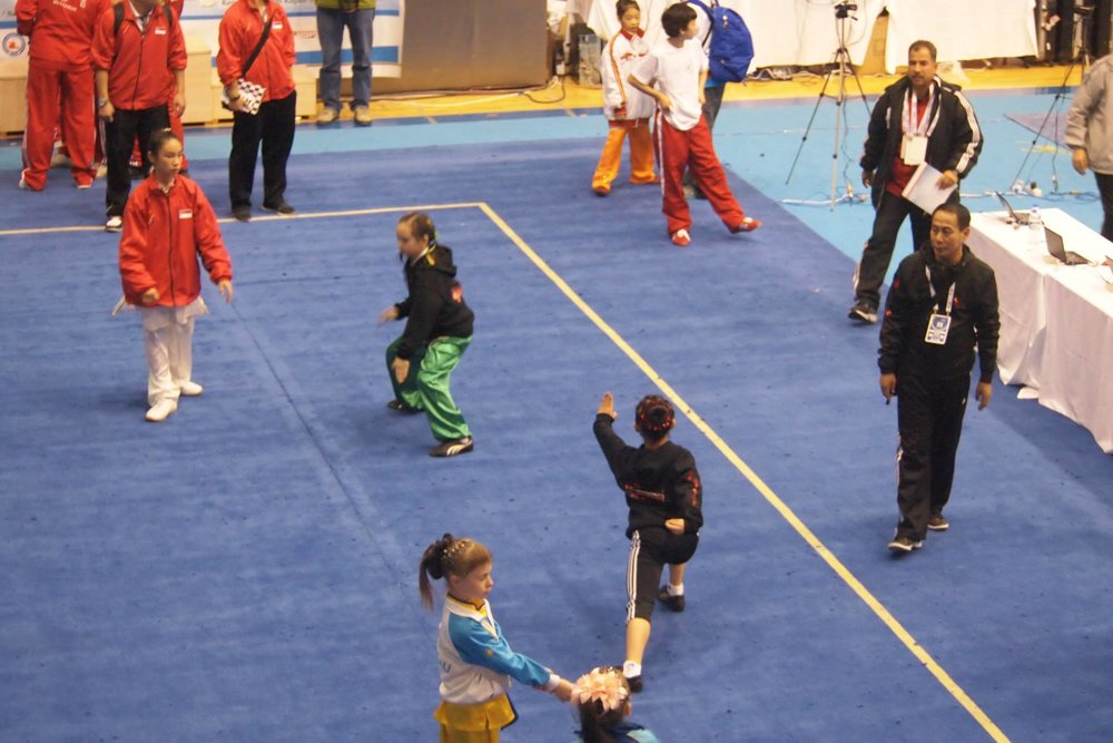 Wayland_Li_Wushu_World_Junior_Championships_2014_Turkey_8.jpg