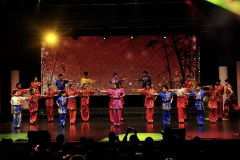 Wayland Li Wushu champions in action.