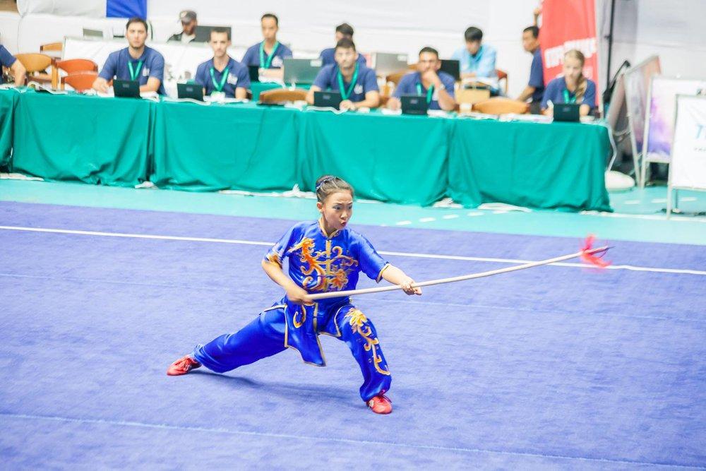 Wayland_Li_World_Wushu_Championships_Sifu_Training_2016_Bulgaria_Canada_3.jpg