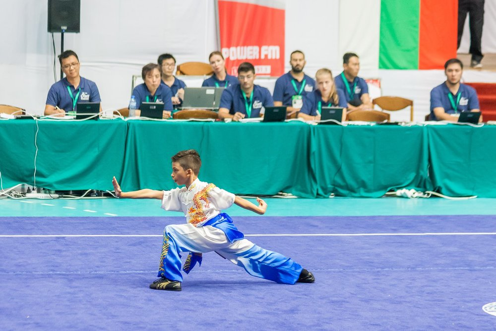 Wayland_Li_World_Wushu_Championships_Changquan_Longfist_2016_Bulgaria_Canada_14.jpg