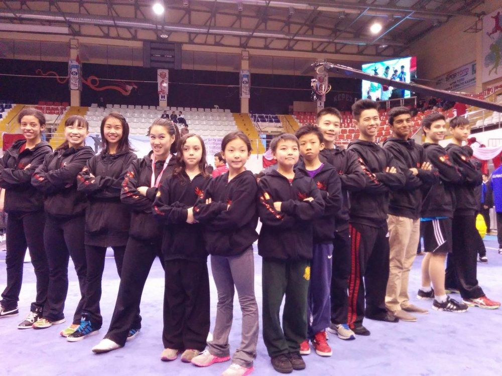 Wayland_Li_Wushu_World_Junior_Championships_2014_Turkey_5.jpg