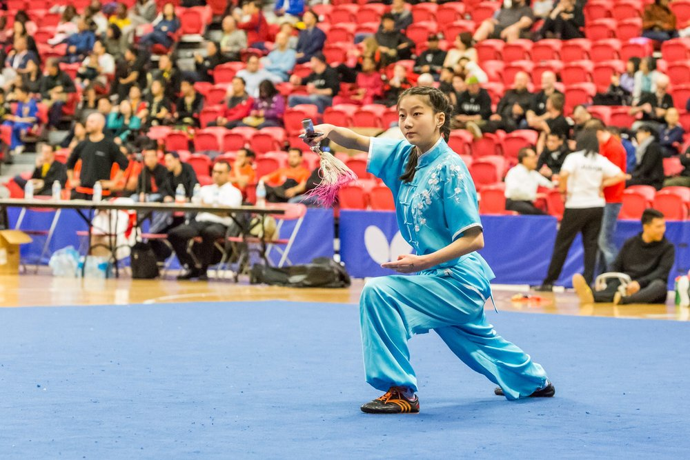 wayland-li-wushu-toronto-markham-canadian-wushu-championships-2017-jianshu-10.jpg