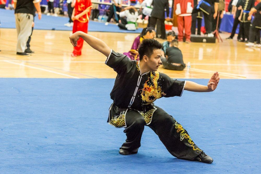wayland-li-wushu-toronto-markham-canadian-wushu-championships-2017-changquan-22.jpg