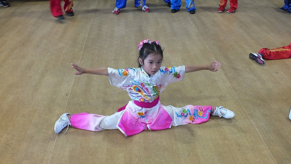 wayland-li-wushu-toronto-canada-demo-chinese-cultural-centre-health-awareness-day-2017-1.jpg