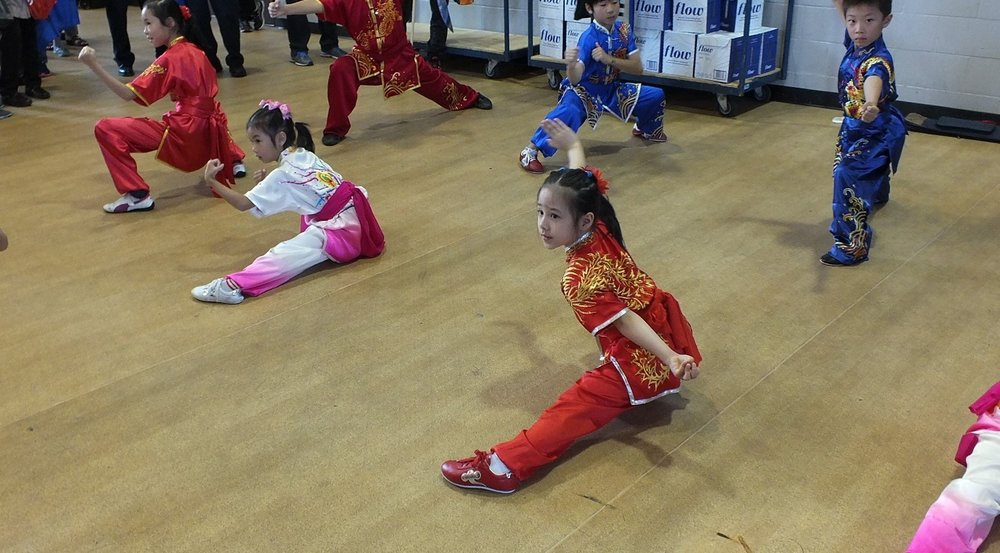 wayland-li-wushu-toronto-canada-demo-chinese-cultural-centre-health-awareness-day-2017-6.jpg