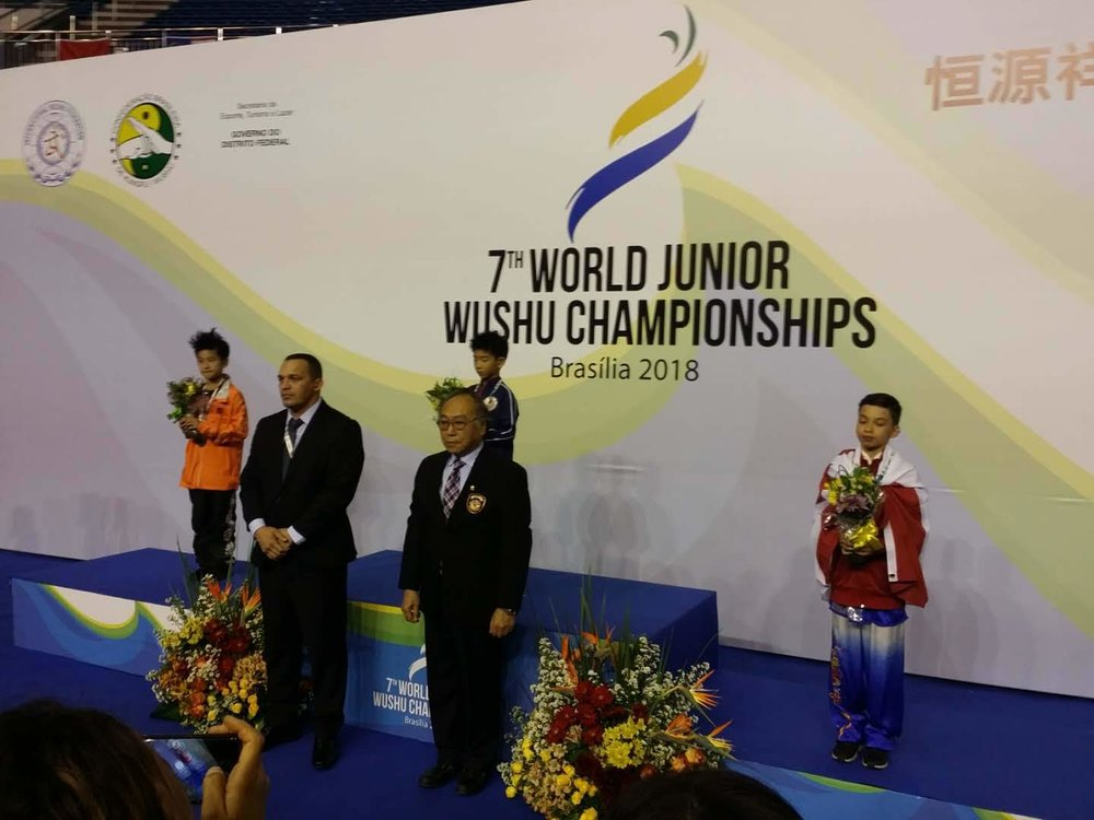 wayland-li-wushu-world-junior-wushu-brazil-team-canada-2018-09.jpg