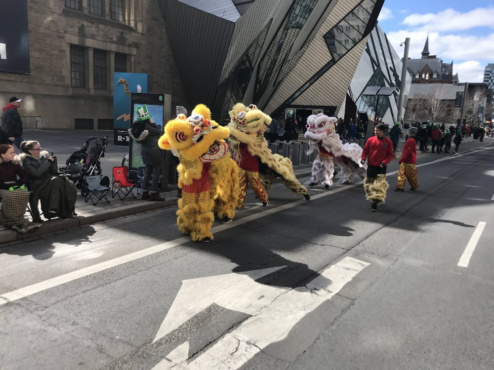 Lions dancing downtown