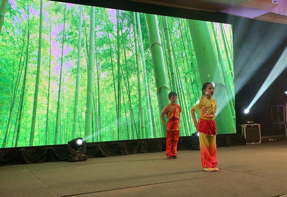 wayland-li-wushu-chinese-new-year-henan-association-canada-2019-01.jpg