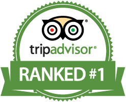 tripadvisor-certificate-of-excellence.png