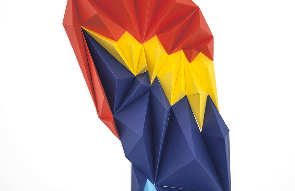 macaw_close_web.jpg