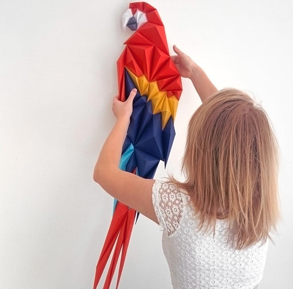 macaw_scale_Max.jpg