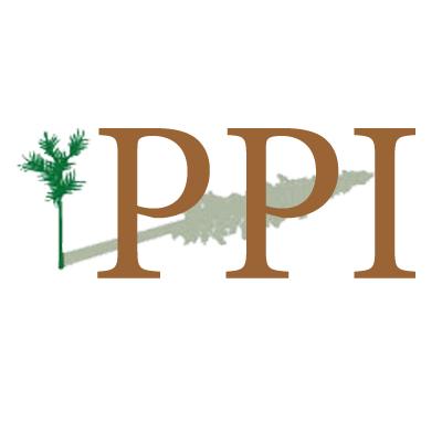 logo-PPI.jpg