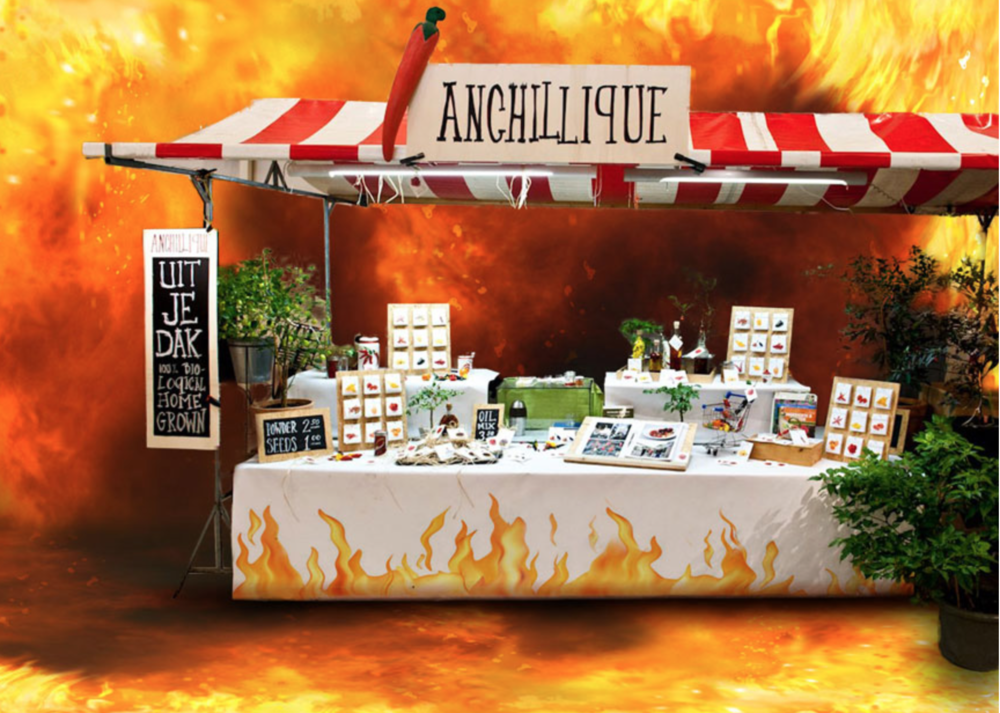 Anchillique seeds -