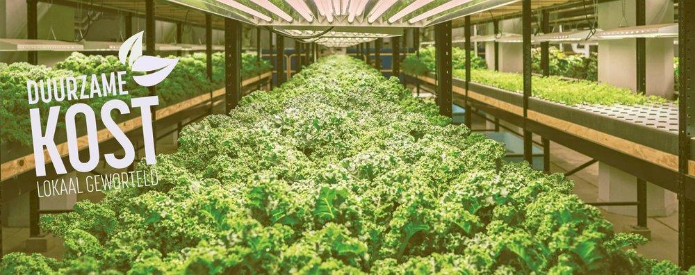 City farming -
