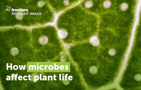 Biotrophic plant-microbe interactions - Published in Frontiers in Plant Science, edited by Ralph Panstruga, RWTH Aachen University, Germany; Pietro Daniele Spanu, Imperial College London, UK