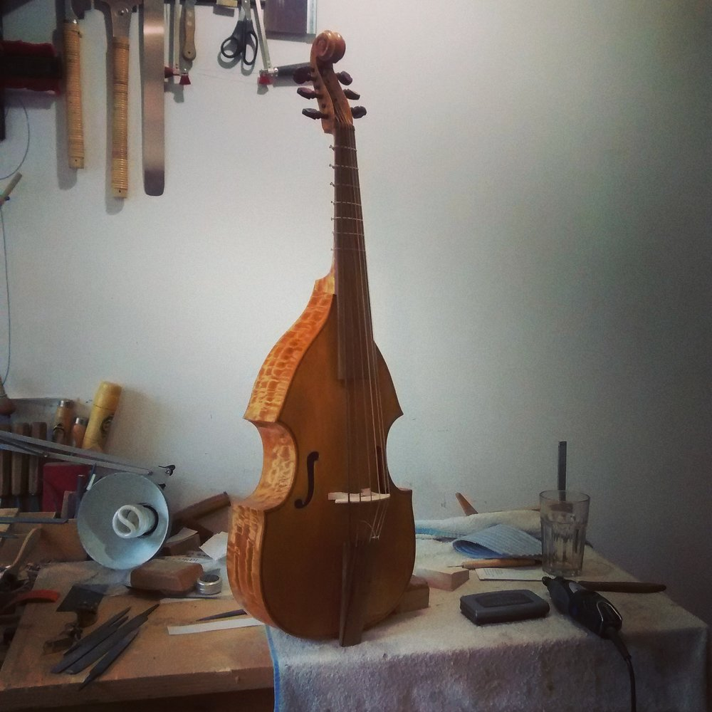 Ciciliano Tenor Viol  53cm string length All-gut stringing - NO SOUNDPOST  €2650 plus strings