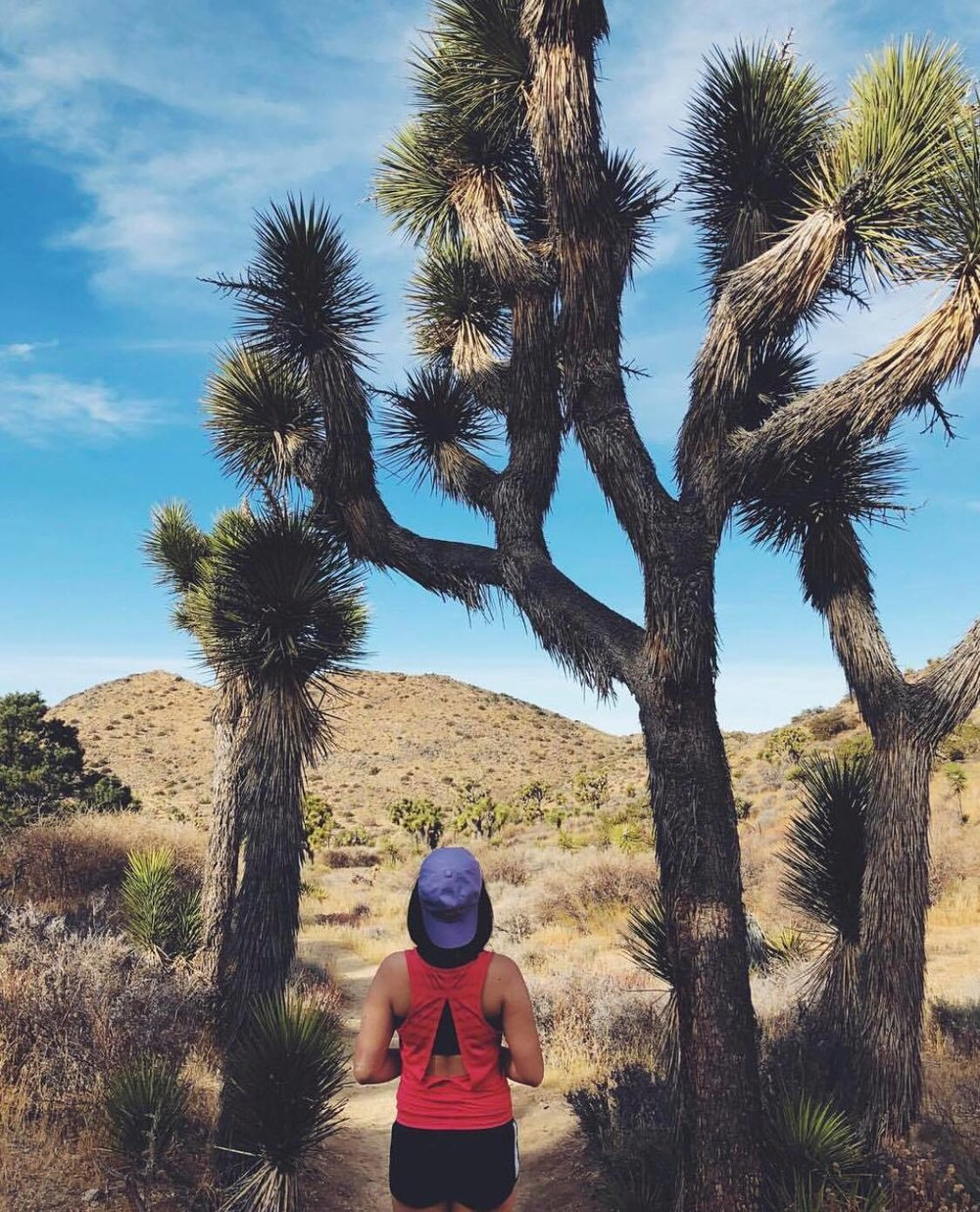 Adventure at Joshua Tree National Park