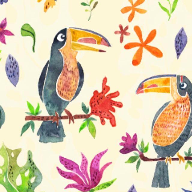 Tropical birds :)