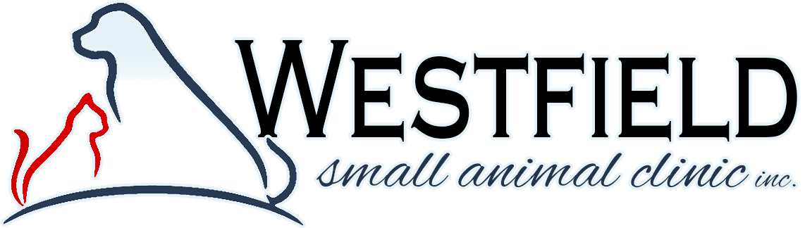 Westfield Small Animal Clinic