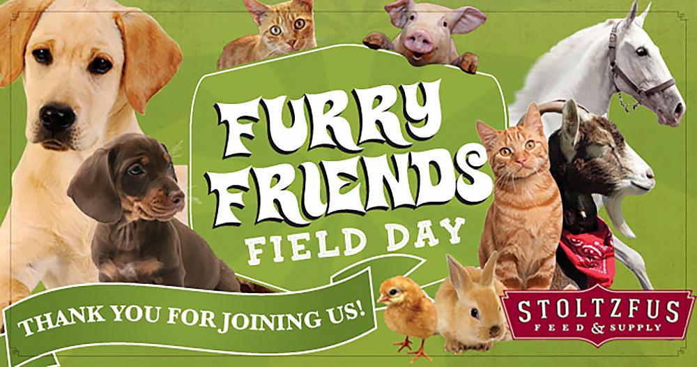 SFS-FFFD-slider.jpg