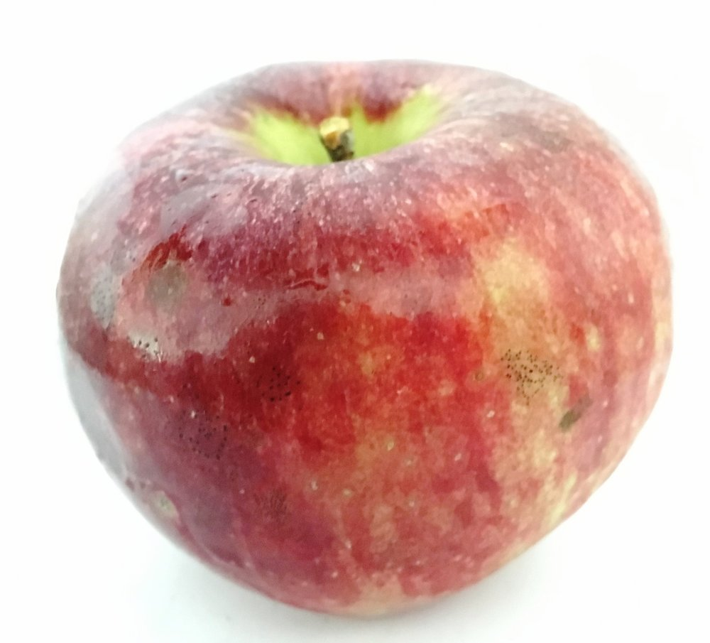 Red Cortland Apple