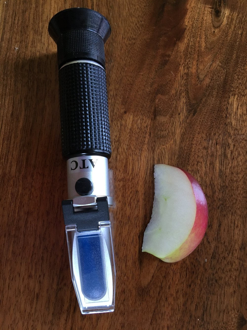 Above: A refractometer and an apple slice.  Squeezing a couple drops of juice from the apple onto the refractometer, one can quickly measure brix and determine if the apple has potential to make a good cider.