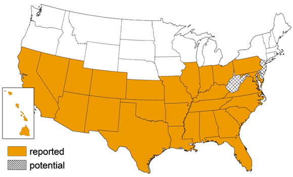 CDC vector distribution map showing Triatomine locations in the United States