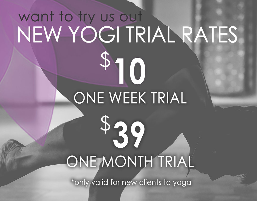 2018_01_15_new yogi rate rate small.jpg