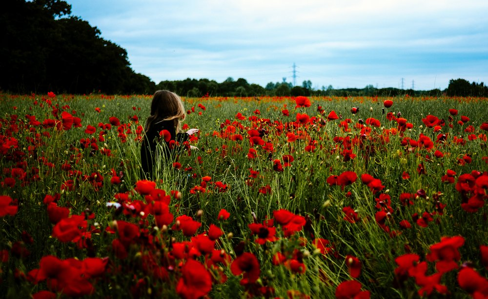 girl in field of poppies.jpg