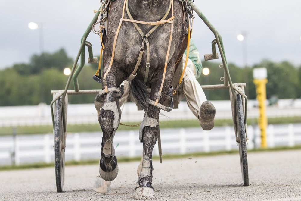 Harness racing horses leave a sloppy track, Tuesday, May 20, at Hoosier Park Racing and Casino, in Anderson, Ind. The sloppy track makes it difficult for drivers and horses to see while racing on the mile long track.