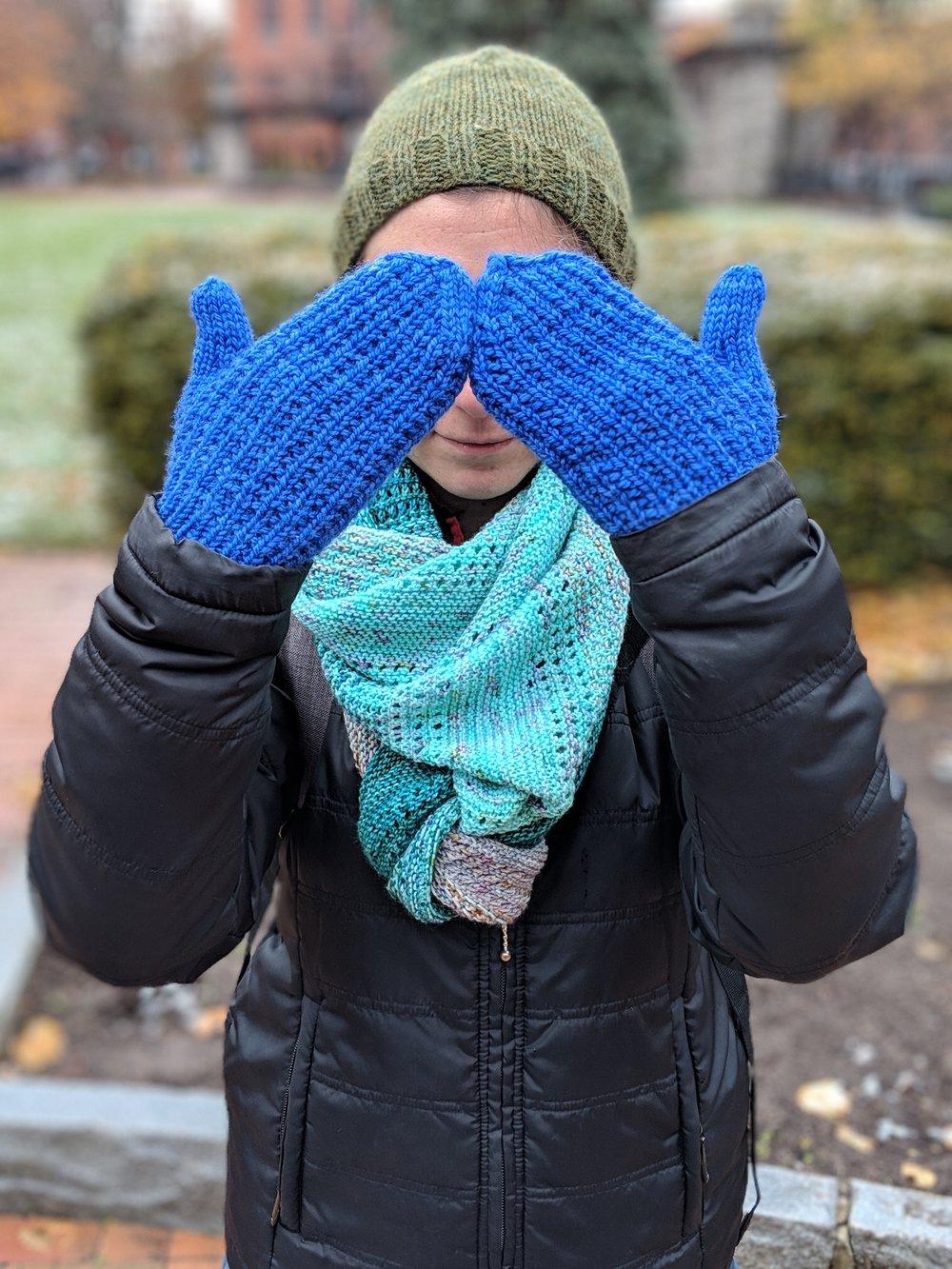 Blue mittens.jpg